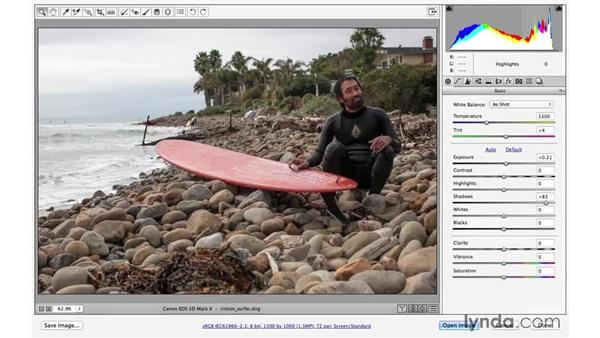 Making changes with the interactive histogram (CC 2014.1): Photoshop CC for Photographers: Camera Raw 8 Fundamentals
