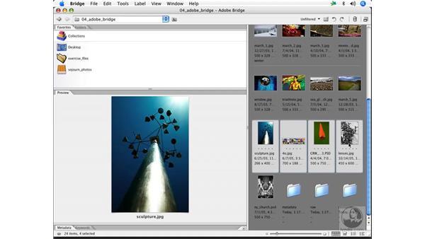 Metadata template: Enhancing Digital Photography with Photoshop CS2