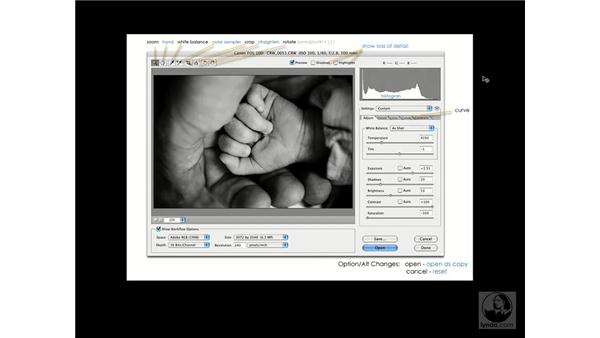 Camera RAW 101: Enhancing Digital Photography with Photoshop CS2