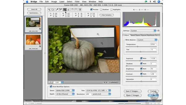 Camera RAW workflow 3: Enhancing Digital Photography with Photoshop CS2