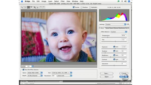 Camera RAW workflow 4: Enhancing Digital Photography with Photoshop CS2