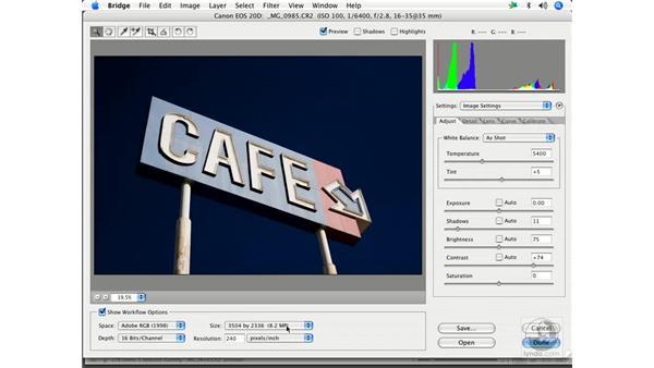 RAW resizing: Enhancing Digital Photography with Photoshop CS2