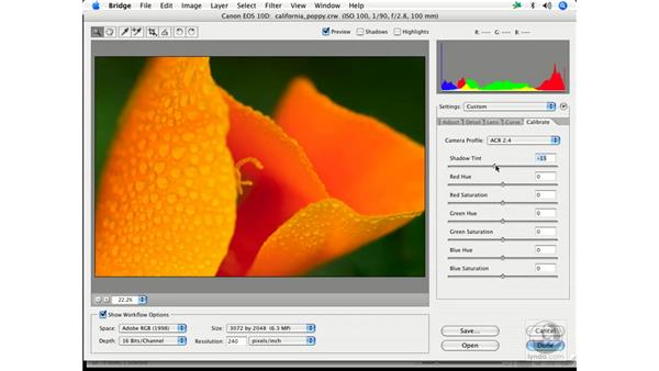 Creative color 1: Enhancing Digital Photography with Photoshop CS2