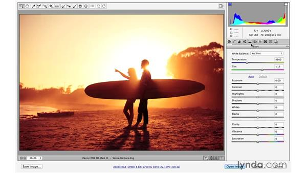 Previewing before and after (CC 2014.1): Photoshop CC for Photographers: Fundamentals