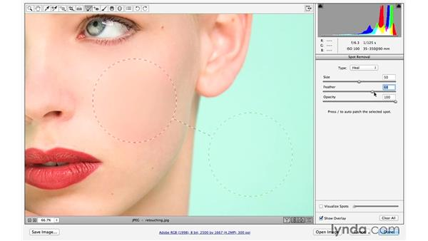Retouching a portrait with the Spot Removal tool (CC 2014.1): Photoshop CC for Photographers: Fundamentals