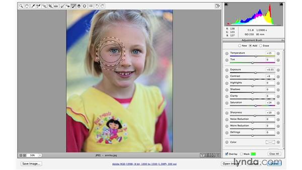 Painting in improvements with the Adjustment Brush (CC 2014.1): Photoshop CC for Photographers: Fundamentals