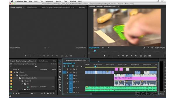 Performing searches and creating search bins (CC 2014.1): Premiere Pro CC Essential Training (2014)