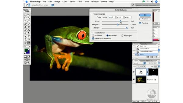 Quick mask and more: Enhancing Digital Photography with Photoshop CS2