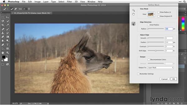 Refining masks with Refine Masks: After Effects Guru: Working with Photoshop Files