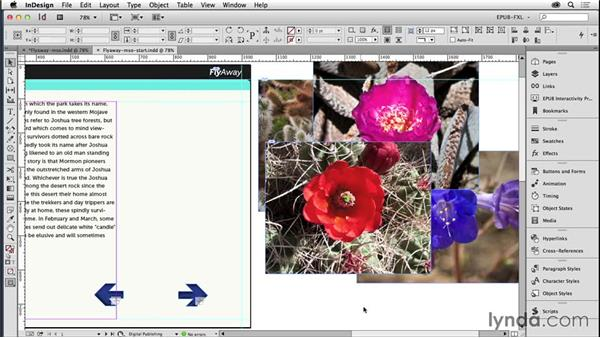 Creating slideshows with multistate objects: Creating Fixed-Layout EPUBs with InDesign CC