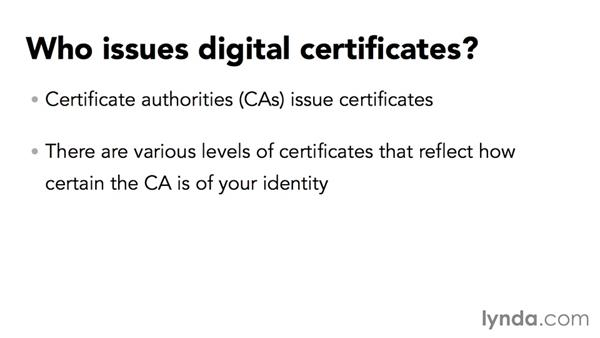 Introducing digital certificates: Securing Microsoft Office Files