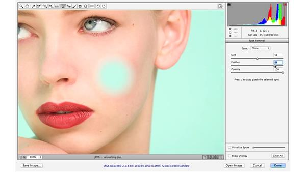 Better spot removal with feathering (CC 2014.1): Photoshop CC for Photographers: Camera Raw 8 Intermediate