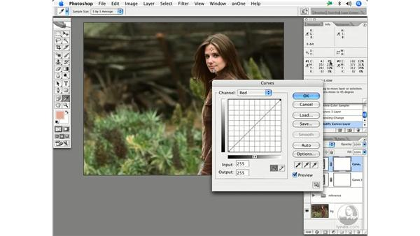 Skin by the numbers 2: Enhancing Digital Photography with Photoshop CS2