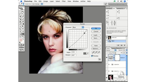 Skin by the numbers 3: Enhancing Digital Photography with Photoshop CS2