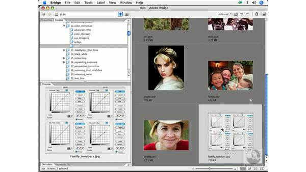 Skin by the numbers 4: Enhancing Digital Photography with Photoshop CS2