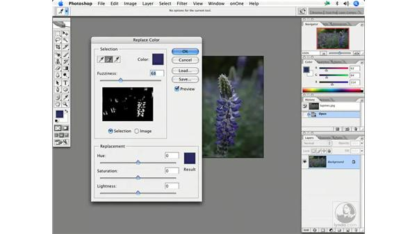 Enhancing color 1: Enhancing Digital Photography with Photoshop CS2