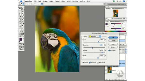 Enhancing color 3: Enhancing Digital Photography with Photoshop CS2