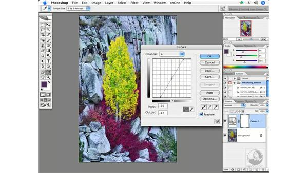 Advanced saturation with Lab: Enhancing Digital Photography with Photoshop CS2