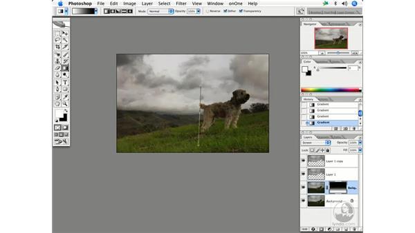 Non-destructive burning/dodging 3: Enhancing Digital Photography with Photoshop CS2