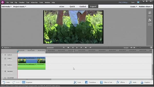 Editing clips with the Favorite Moments tool: Up and Running with Premiere Elements 13