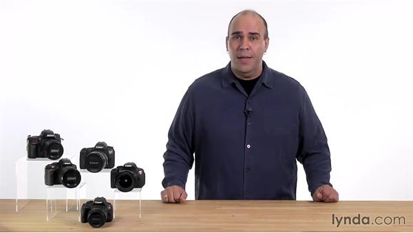 Shooting in scene modes: Up and Running with the Nikon D5200 and D5300