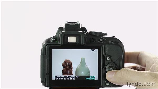 Image review and playback: Up and Running with the Nikon D5200 and D5300