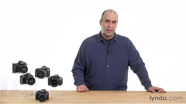 Understanding metering modes and switching between them: Up and Running with the Nikon D5200 and D5300