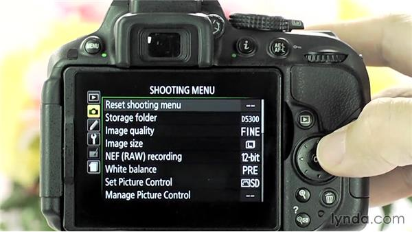 Shooting video: Up and Running with the Nikon D5200 and D5300
