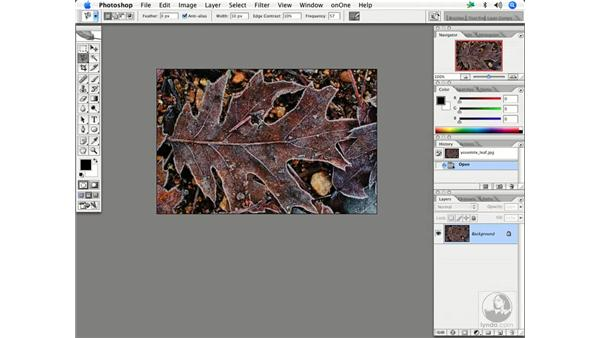 The Lens Blur in action: Enhancing Digital Photography with Photoshop CS2