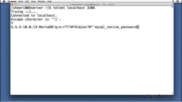 Configuring HandlerSocket: Advanced Topics in MySQL and MariaDB