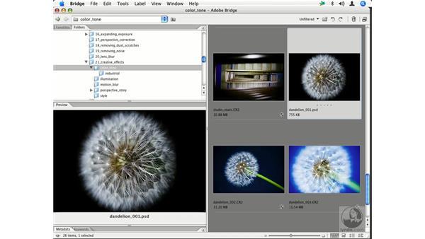 Camera RAW color creativity 1: Enhancing Digital Photography with Photoshop CS2