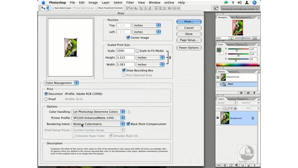 Printing: Enhancing Digital Photography with Photoshop CS2