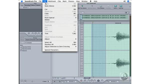 Using the Sample editor: Soundtrack Pro Essential Training