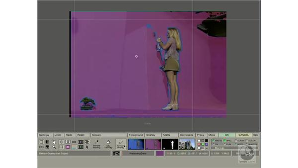 Ultimatte AdvantEdge: After Effects 7 and Photoshop CS2 Integration