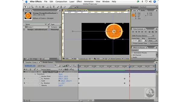 Gravity: the freefall: After Effects 7 Animation Techniques