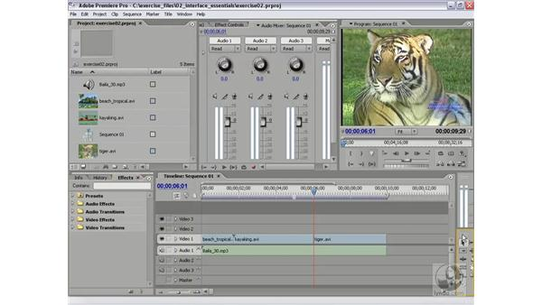 Window and panel management: Premiere Pro 2 Essential Training