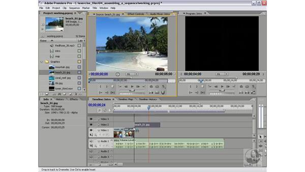 Trimming and rearranging in the timeline: Premiere Pro 2 Essential Training