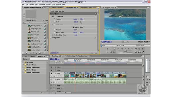 Modifying fixed effects in the Effect Controls panel: Premiere Pro 2 Essential Training