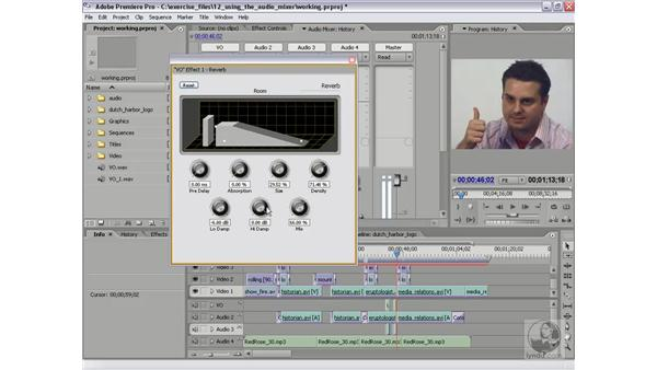 Applying track-based effects: Premiere Pro 2 Essential Training