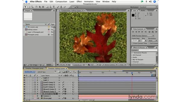 Previewing a region of interest and a work area: After Effects 7 Essential Training
