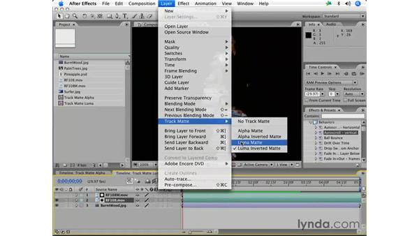 Luminance-based track mattes: After Effects 7 Essential Training