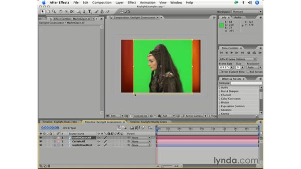 Using Keylight: After Effects 7 Essential Training
