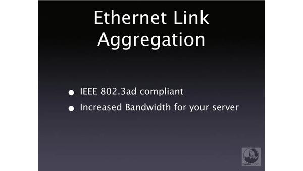 Ethernet link aggregation: Mac OS X Server 10.4 Tiger Essential Training
