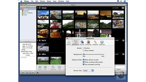 Customizing appearance preferences: iPhoto 6 Essential Training