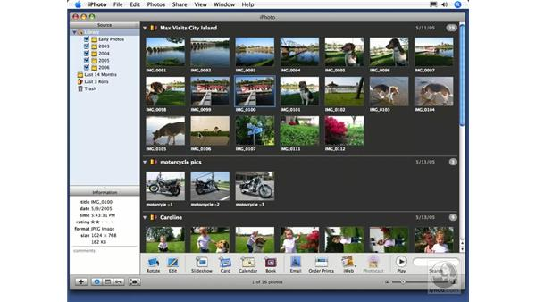 Rating your photos: iPhoto 6 Essential Training