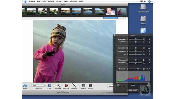 Setting exposure levels: iPhoto 6 Essential Training