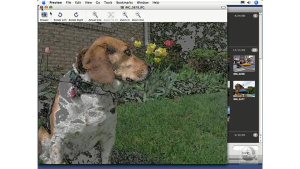 Editing in an external editor: iPhoto 6 Essential Training