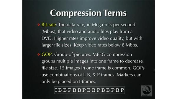 Compression: Compressor 2.1 Essential Training