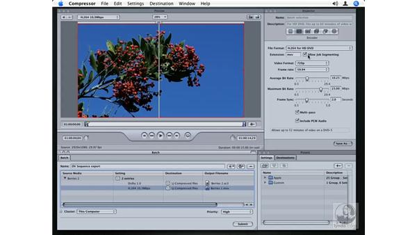 Compressing HD and HDV video: Compressor 2.1 Essential Training