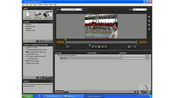 Understanding Flash video: ActionScript 3.0 in Flex Builder 2.0 Essential Training